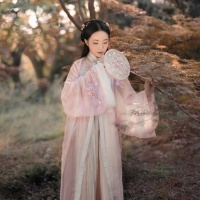 #漢服 #HanFu #HanDynastyClothing | #锦醉嫣然 | #FashionLookBook #MingDynasty – A warm pastel blossom embroidery peach mild wintery autumn wear...