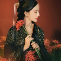 #漢服 #HanFu #HanDynastyClothing | #摄影师小欣欣 #有香如故汉服 | #FashionLookBook  -  for a  Autumn Wintery garden urban  forbidden city wall bold dark colours..